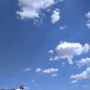 Альбом: Районна літня екологічна школа (день шостий)